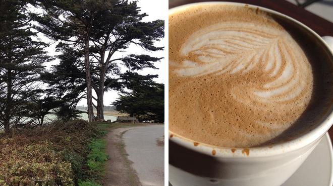 Trail ⇨ Café