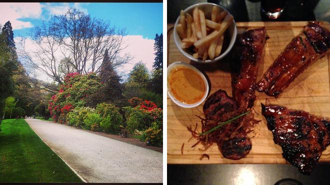 Garden ⇨ Steakhouse