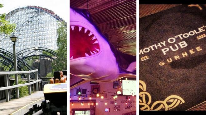 Theme park ⇨ Seafood restaurant ⇨ Pub
