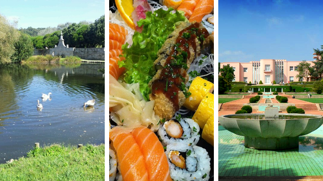 Park ⇨ Sushi restaurant ⇨ Learn about art