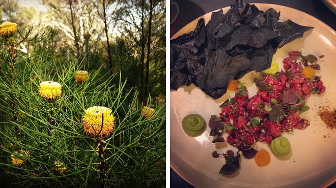 Botanical garden ⇨ Hotel bar