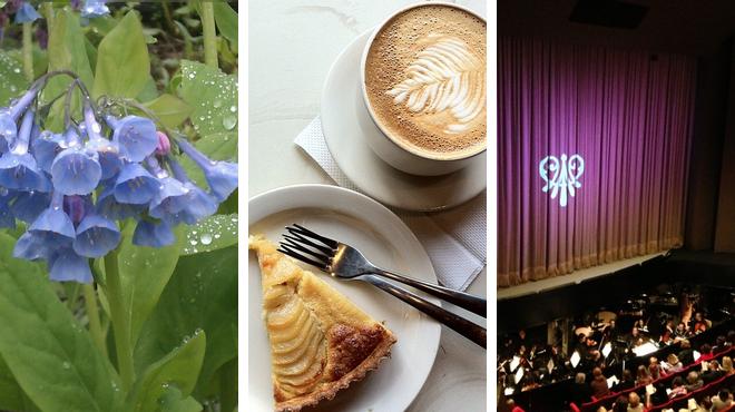 Park ⇨ Coffee shop ⇨ Performing arts venue