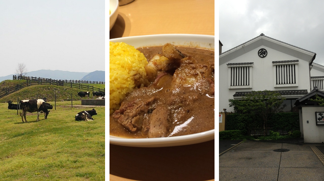 Farm ⇨ Asian restaurant ⇨ Nabe restaurant