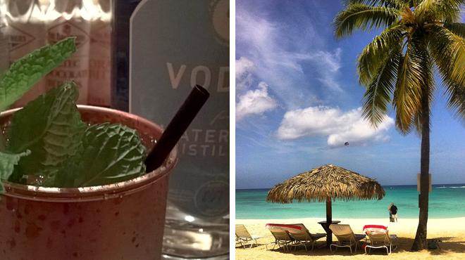 Caribbean restaurant ⇨ Island