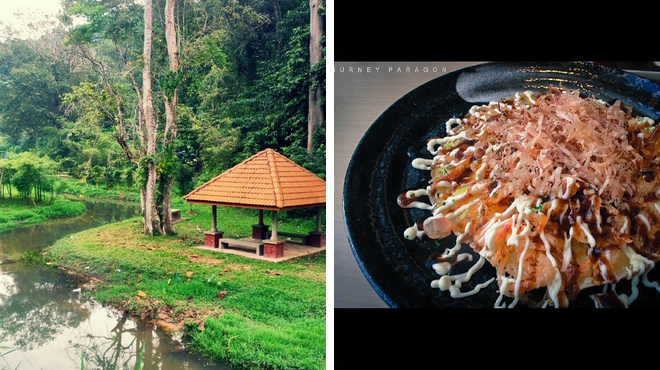 Botanical garden ⇨ Japanese restaurant