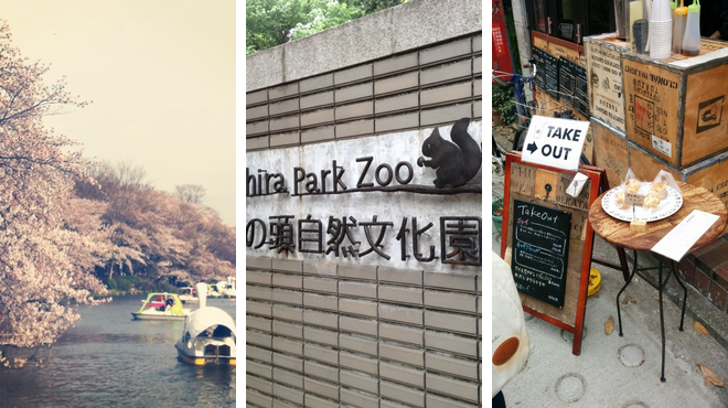 Park ⇨ Zoo ⇨ Tea room