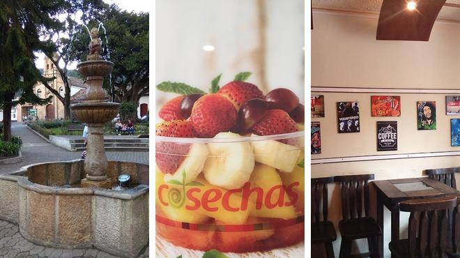 Museum ⇨ Restaurant ⇨ Bar