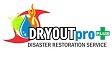 Website for DRYOUTpro, PLUS, Inc.