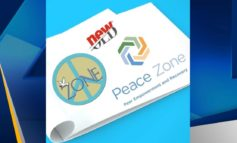 Peace Zone Spring Fundraisers
