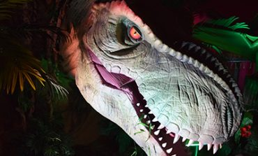 "Catch the Dinos Before They Go ""Extinct""!"