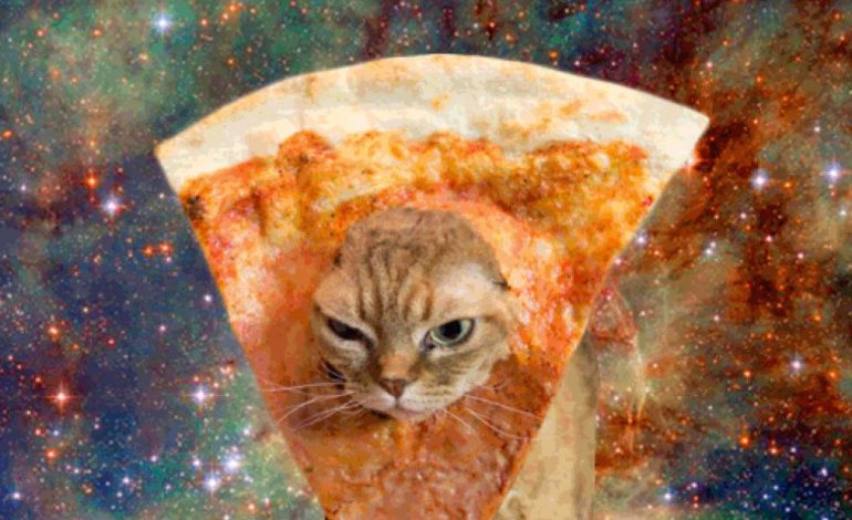 5 Things You Didn't Know: Pizza