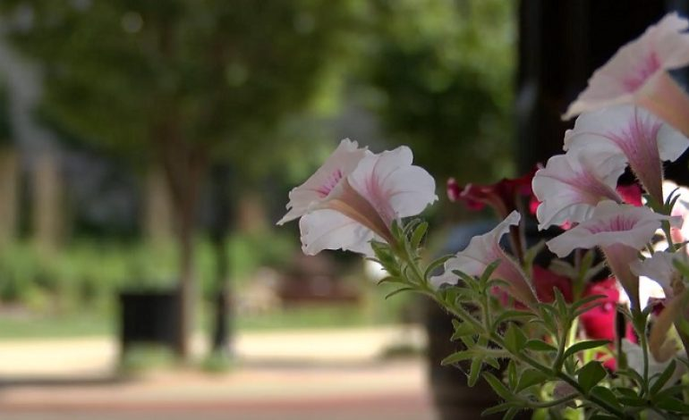 Downtown Evansville Beautification Plan Moves Forward
