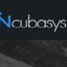 Incubasys1