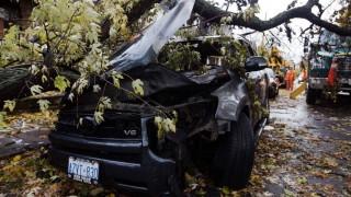 Car-nage: Superstorm Sandy leaves trail of vehicular destruction