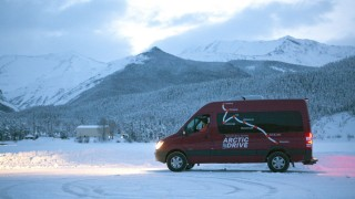 Driving north to Alaska, where the bison roam