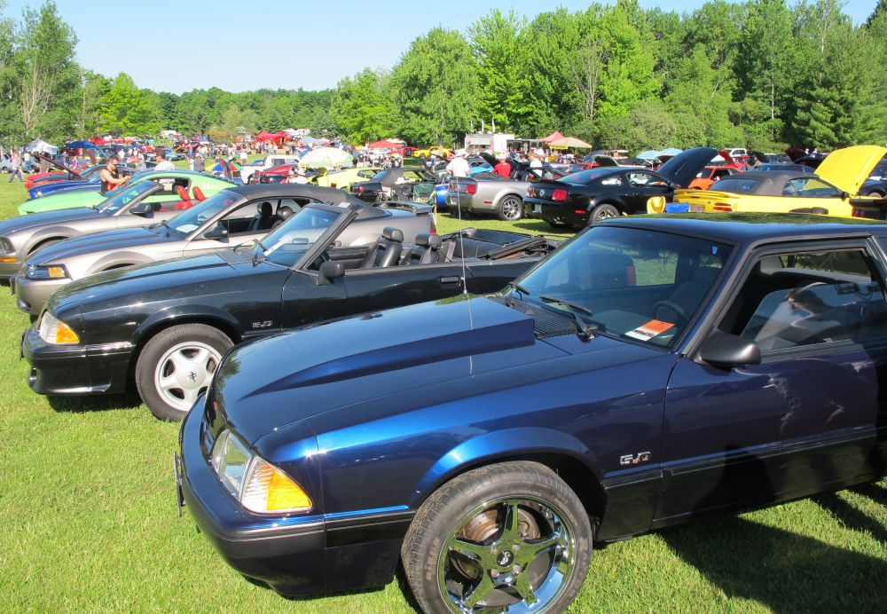 Fleetwood Country Cruize-in 2014