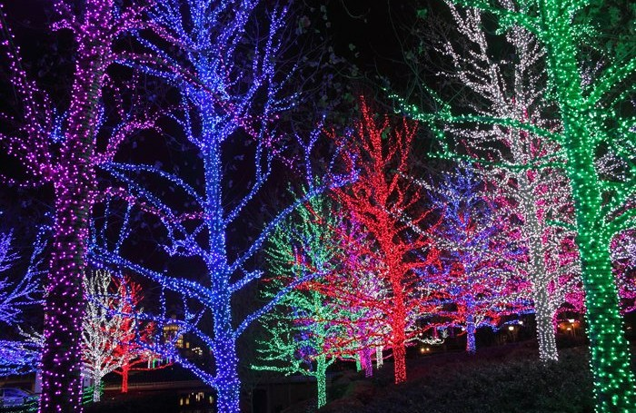 How To String Christmas Tree Lights Today Show : 8 of the Best Christmas Light Shows in Canada - WHEELS.ca