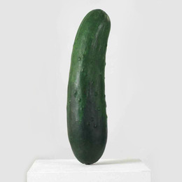 Medium.erwin_wurm_cucumber.jpg