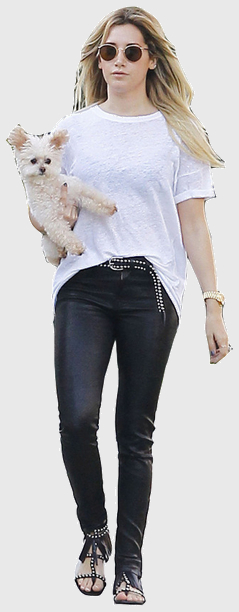 Ashley tisdale cutout8744