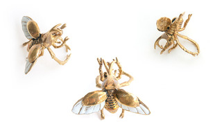 http://s3.amazonaws.com/wikiroom/photos/17037/original/bug_ring_01.jpg?1341353967