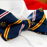 Multi_clr_stripe_jacquard_mens_bow_tie_b140