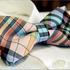 Multicolor_checked_unusual_mens_bowtie_b191