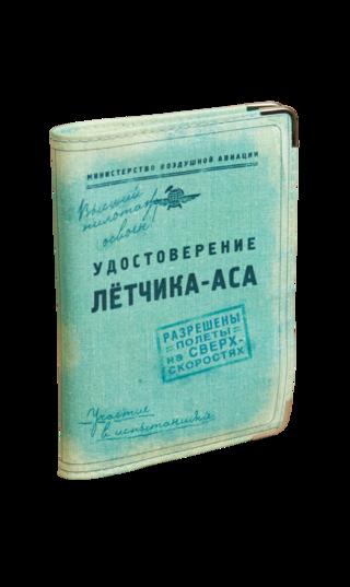 Oblogka-dlya-avtodokumentov-letchik-as(kozha)