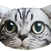 Cat_pillow1