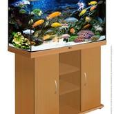 3219_akvarium--rif-200