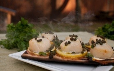 scallops-alder-seafood