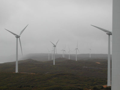 800px-wind_farm_albany_preview
