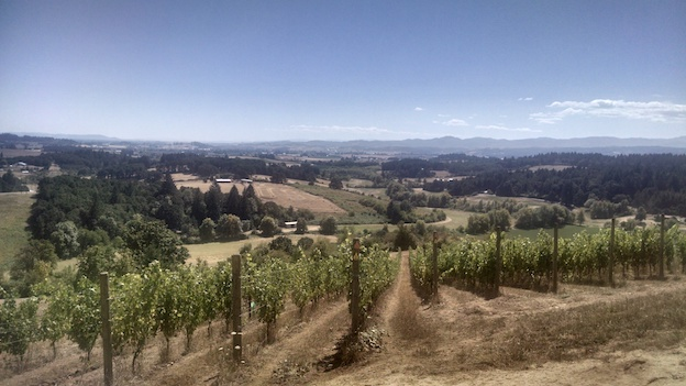 The bishop creek vineyard in yamhill carlton  now owned by nicolas jay copy