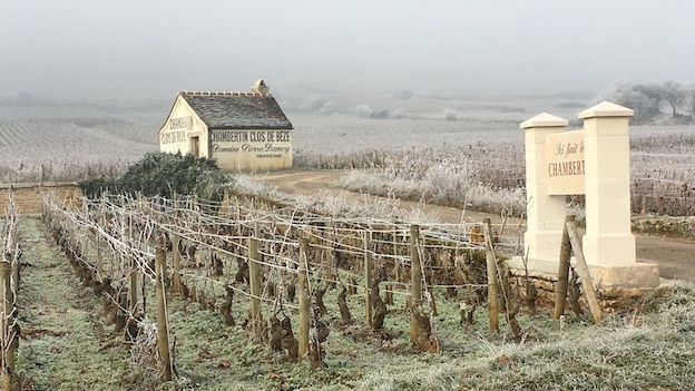 Chambertin and clos de be%cc%80ze on ice cover