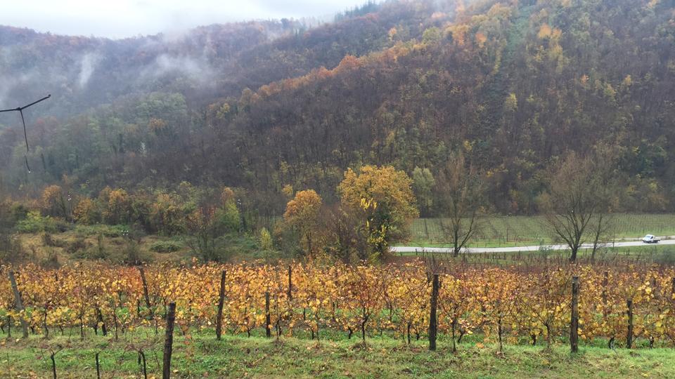 2 the view from ronchi di cialla