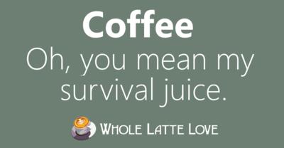 Survivaljuice
