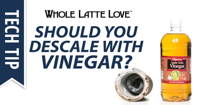 Should_i_descale_with_vinegar_1200x628