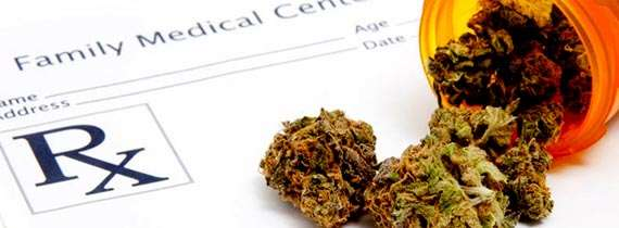 Florida has begun processing medical marijuana ID laws.