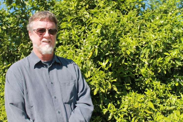 Jude Grosser is among the University of Florida researchers working to breed or engineer new citrus trees resistant to greening. Photo by Amy Green