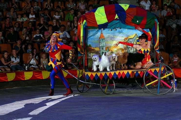 Image: The Menestrelli Dog Circus,  artegonmarketplace.com