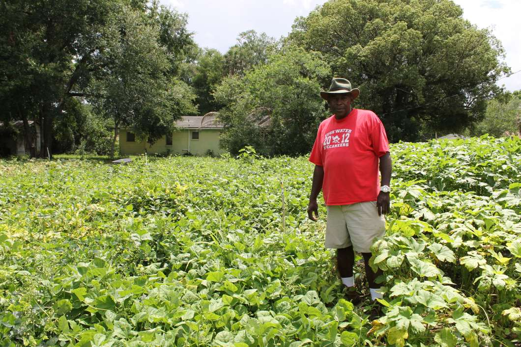 Master Gardener Ruford Shepherd. Photo: Matthew Peddie. WMFE