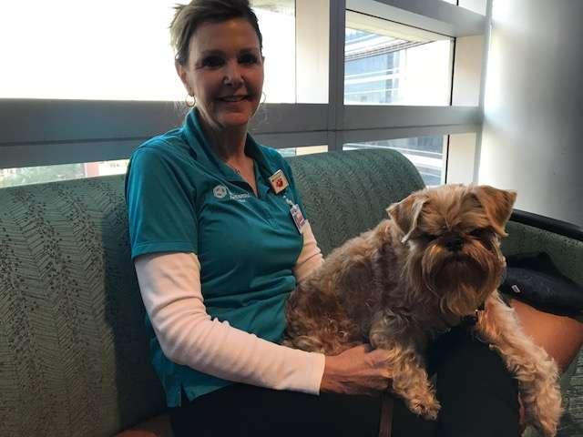 Pets heal at Florida Hospital. Photo: Danielle Prieur