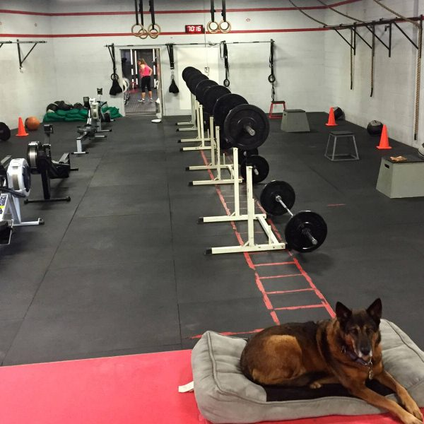 crossfit cleveland