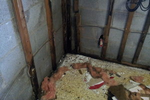 Mold Inspection, Valparaiso, IN