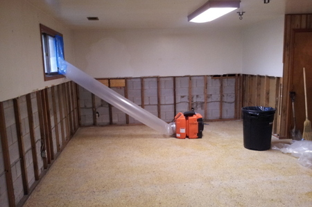 Offer basement mold after resized
