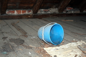 Raccoon Damage in Attic, Valparaiso, IN