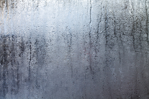 Humidity is a Common Cause of Mold