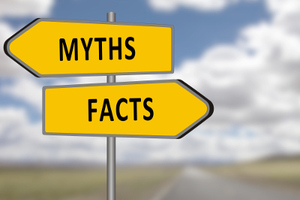 Top 3 Myths About Mold Remediation