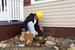 3 Ways Crawlspace Encapsulation Improves Your Home