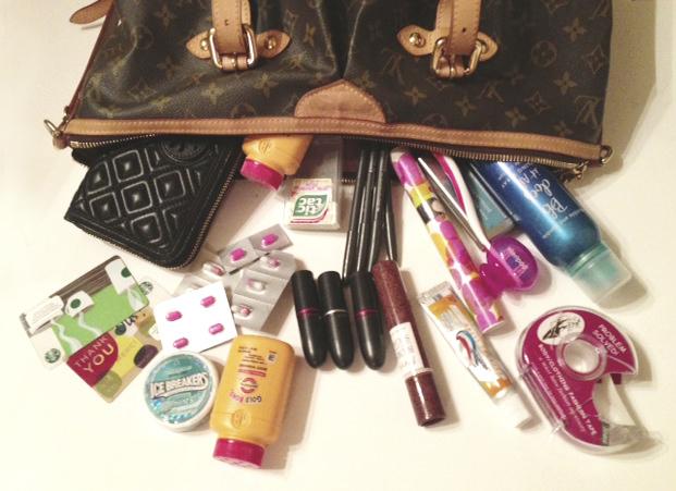 Lisas_purse