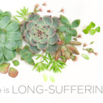 Attributes of God | He is Long-Suffering